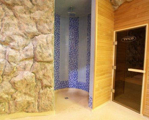 DSC00408-Custom-495x400 Бассейны, SPA ванны, купели/бочки, душевые